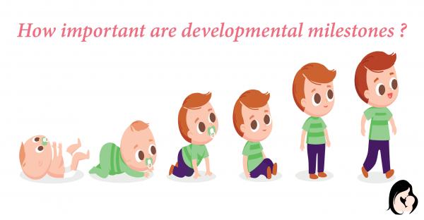 How important are developmental milestones ?